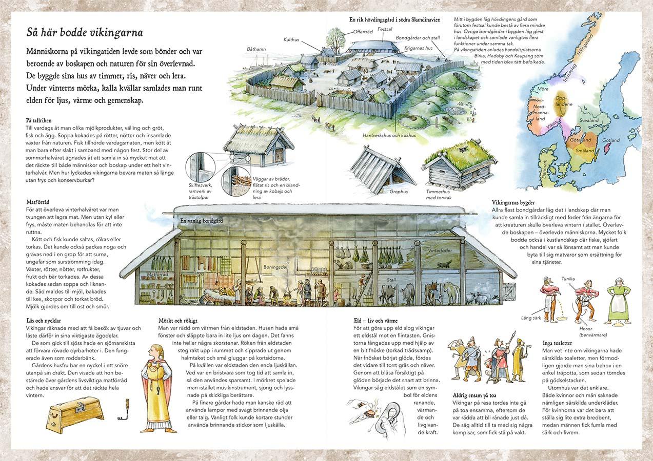 Halvdan & Meia, Learn more about: Viking Age settlements (Client: Bonnier Carlsen Publishing House, Sweden).