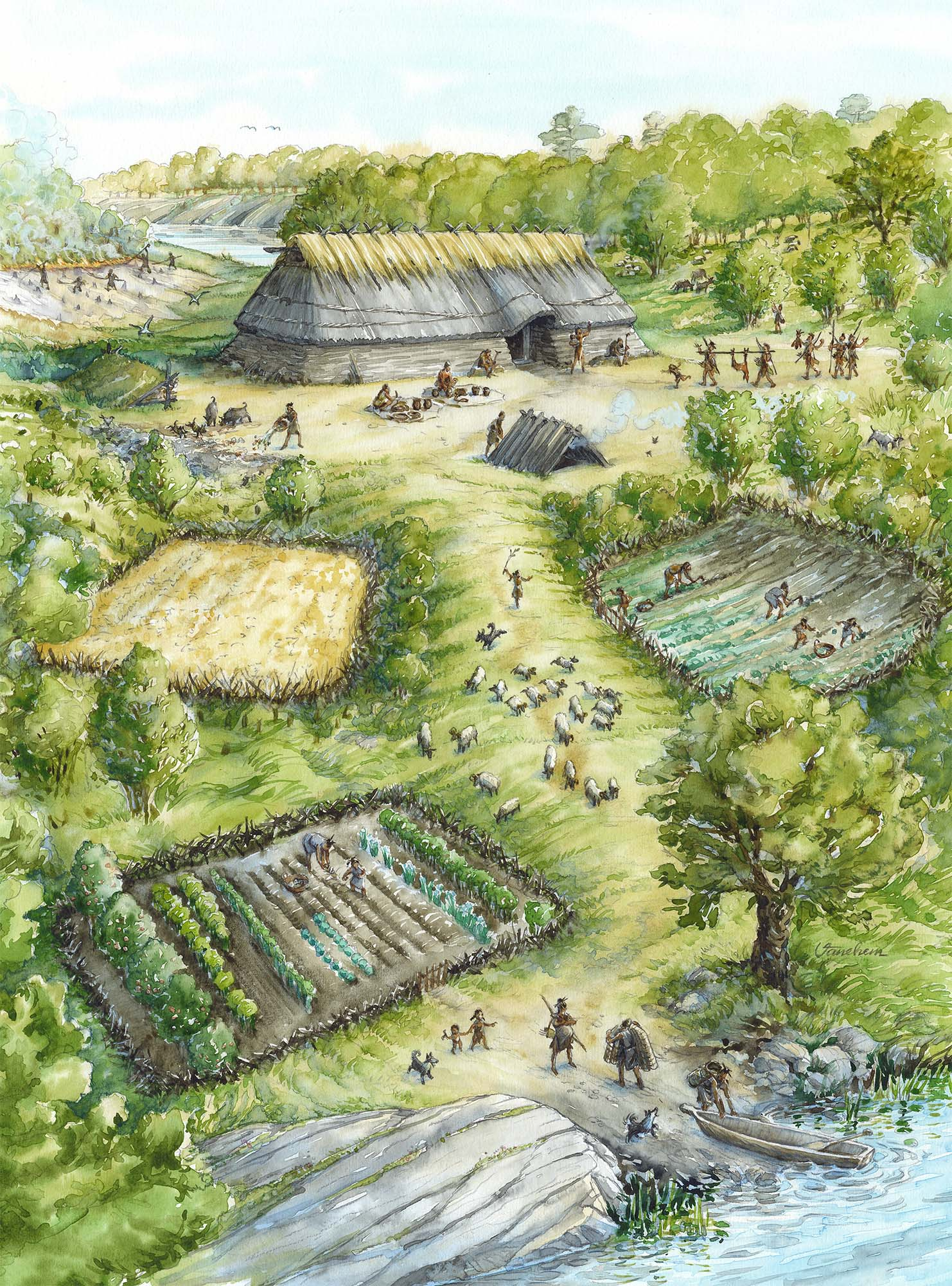 Neolithic settlement on the south coast of Norway (Client: Aust Agder Museum og Arkiv in Arendal, Norway).
